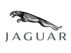 jaguar differential